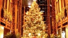 Beautiful-Christmas-Tree1