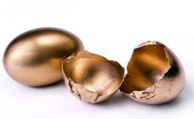 Broken Nest Egg