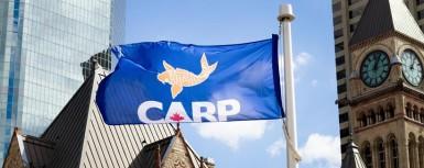 CARPFlagNewsletter.105449