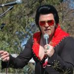 Elvis1 copy