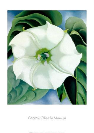 Jimson Weed Georgia O'Keeffe Print