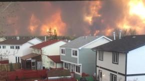 Alta Wildfire