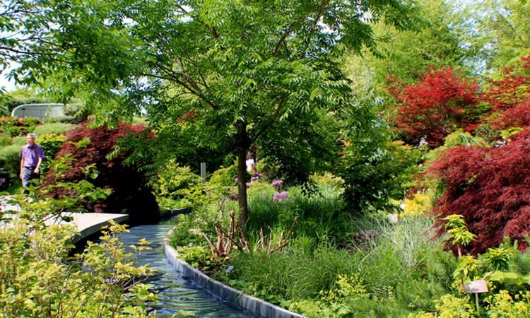 TBG Water Channel Garden