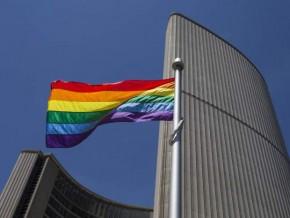 T.O Pride Flag